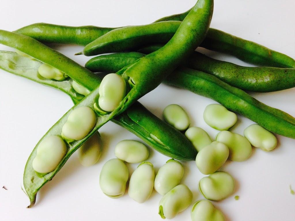semear favas e ervilhas